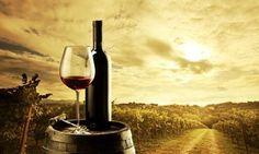Y ahora te estarás preguntando que es, es un tipo de turismo que está encaminado a potenciar el turismo etnológico de una región, es decir, es el tipo de turismo que le gusta conocer el vino desde un punto de vista relajado.