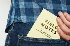 Field notes Foto por Asier G. Morato.