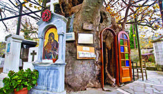 Miraculous church of Panagia Plataniotissa in Kalavryta - Greek City Times Places In Greece, Crete Greece, Christian Church, Greece Travel, Pilgrimage, Miraculous, Greek, Outdoor Structures, City