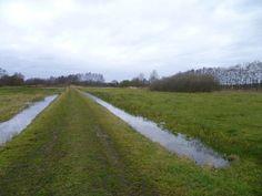 2014-02-09 Vanaf de Flierdijk loop je zo het natuurgebied in