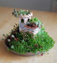 Atalaya espiral No Linde - Incremental Mini-Gardens #nolinde #moss #succulents nolinde.com