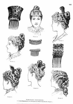 1890 hairstyles and combs