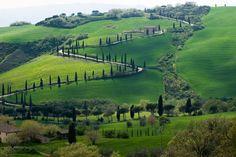 Chianti Hills; Tuscany, Italy