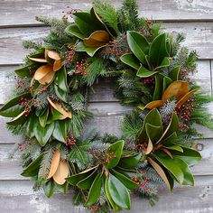 Southern magnolia, Rose Hips, Blue Juniper, and Fraser Fir wreath.  60.00