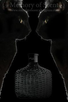 John Varvatos Artisan Black: neroliredemption