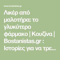 Λικέρ από μαλοτήρα: το γλυκύτερο φάρμακο | Κουζίνα | Bostanistas.gr : Ιστορίες για να τρεφόμαστε διαφορετικά