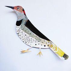 Continuing with more birds. I think the Woodpecker is my spirit animal. #spiritanimal #spiritguide #woodpecker #birdillustration #zoeingram #surfacedesign #makeartthatsells #lillarogers #homedecor #matshomedecor #cutpaper #collageart