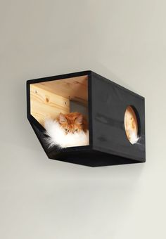 Catissa cat house module | Catissa | We create things for cats =)