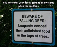 """I would think a """"beware of leopards"""" sign might be better! Dump A Day Funny Pictures Of The Day - 74 Pics I Love To Laugh, Make You Smile, Funny Quotes, Funny Memes, Jokes, Funny People Pictures, Random Pictures, Dump A Day, Funny Signs"""
