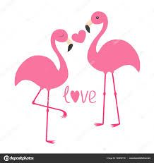 Image result for flamingo love