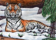 ACEO TW JAN Original art animal wild cat tiger realism snow miniature - SMcNeill
