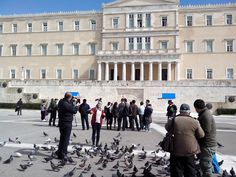 Pigeons & the Parliament