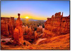 Bus Tour to Bryce Canyon, Antelope Canyon & Lake Powell from Las Vegas Bryce Canyon, Canyon Lake, Canyon Utah, Bryce National Park, National Park Camping, National Park Tours, Stratosphere Las Vegas, Cedar City Utah, Grand Canyon West