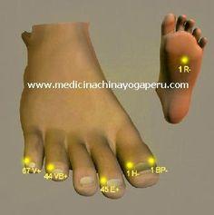 -El dedo pulgar (lado externo) tiene el punto 1BP el canal de energía del bazo-páncreas: elimina la flatulencia, detiene las hemorragias. -En el dedo meñique el punto 67V corresponde al último punto del canal de la vejiga: despeja el calor; indicado en casos de rinitis y cefaleas. -En la planta del pie esta el punto 1R el canal de energía del riñón: revitaliza los riñones;para pacientes hipertensos o que sufren de migrañas y vértigos; muy útil para los estados depresivos y el estrés.