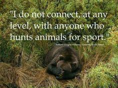 I do respect those who eat the animals they hunt. I feel it is even more respectful to kill the animals you eat than having them killed by someone else. But sports ? Football is a sport. Hunting shouldn't.