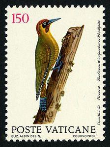 Ciudad del Vaticano-Pájaro Carpintero Verde.