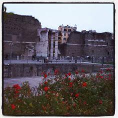 Rome ...is Rome #kialacamper #walkinginmycity #rome #roma #art #picoftheday #beatuiful #beaitifulplace