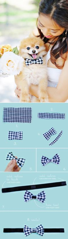 no sew bow tie for pets- could be used for decorating tree or packages as well