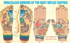 Acupressure Treatment Self Treatments in faridabad, self treatments, magnetic gadgets in . Acupressure Therapy, Acupressure Treatment, Acupressure Points, Self Treatment, Acupuncture Benefits, Body Map, Alternative Treatments, Massage Therapy