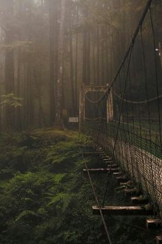 Bridge over troubled World