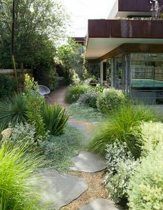 Beautiful garden with pathway