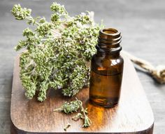 Buy Thyme Essential Oil Bottle by CatiaM on PhotoDune. Thyme Herb Essential Oil Bottle on a Wooden Board Thyme Essential Oil Uses, Essential Oils For Cough, Chamomile Essential Oil, Essential Oil Bottles, Health Benefits Of Thyme, Oil For Cough, Thyme Herb, Natural Pesticides, Nutrition Articles
