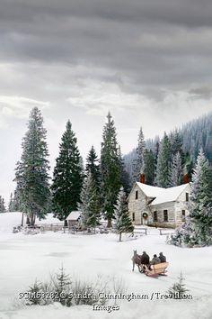 Trevillion Images - winter-country-scene