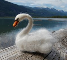 Isnt this beautiful!  Etsy listing at https://www.etsy.com/listing/190860444/needle-felted-swan-needle-felted-animal