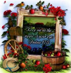 Psalm17:5 Kept. The apple of your eye.