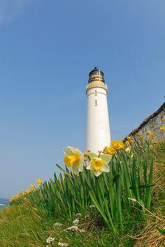 Scurdie Ness Lighthouse by G Davidson, via Flickr