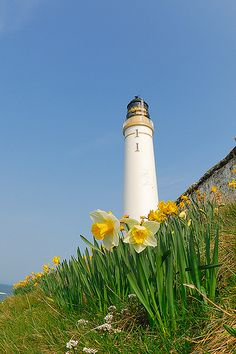 Scurdie Ness Lighthouse by G Davidson, via Flickr