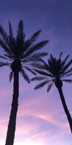 Purple Wallpaper Iphone, Summer Wallpaper, Beach Wallpaper, Tree Wallpaper, Iphone Background Wallpaper, Aesthetic Backgrounds, Aesthetic Iphone Wallpaper, Aesthetic Wallpapers, Beautiful Nature Wallpaper