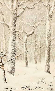 """Trees in Snow"" by George Elbert Burr, 1883 (Medium: Pen and ink, and ink wash on paper)"