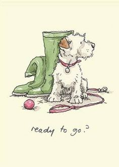 'Ready to go'. Illustration by Anita Jeram Cute Drawings, Animal Drawings, Wire Fox Terrier, Bull Terriers, Cartoon Dog, Children's Book Illustration, Animal Illustrations, Dog Art, Illustrators