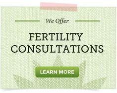 Fertility Q&A: Systemic Enzyme Therapy, Dong Quai & Endometriosis, Soy Lecithin Products...