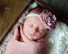 newborn big flower