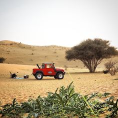 Desert picnic
