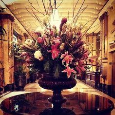 #freshflowers Hotel Design Architecture, Hotel Lobby, Fresh Flowers, New Orleans, Reception, Instagram Posts, Plants, Flora, Plant