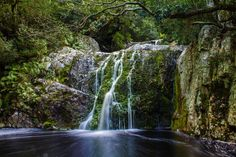 #waterfall #stream #creek #mountain #trees #forest #water #green #rocks #travel #longexposure #river