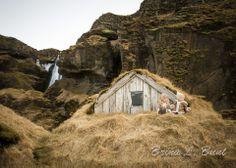Iceland: Little Elves