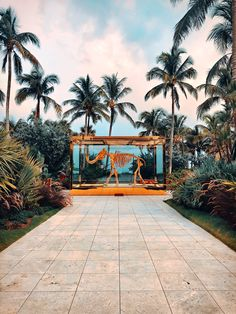 Find out about Miami Beach's Famed South Beach. From Ocean Drive to Lincoln Road, there are a multitude of diverse and beautiful places to discover. South Beach Miami, Beach Images, Beach Pictures, Art Basel Miami, Weird Pictures, The Good Place, Travel Destinations, Beautiful Places, Vacation