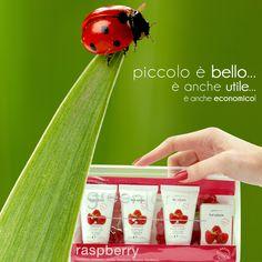 Travel Kit Fruit Extracts fragranza lampone   In una pratica bustina trasparente in pvc, contiene 4 prodotti:  shower gel 30 ml (gel doccia)  body cream 30 ml (crema corpo)  shampoo 30 ml  soap bar (sapone)