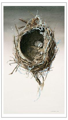 Steve Morris | 'Abandoned Nest' ©