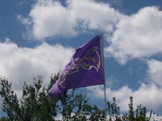 Flying the Catamount flag proudly.