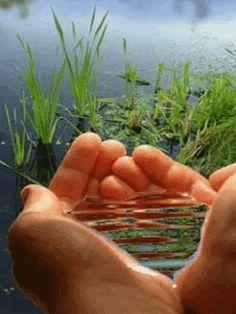FRATERNIDADE     O Caminho:  Todos somos ministros de Deus neste mundo. Fomos ...