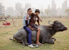 Two Boys, Water Buffalo, Rajarhat, 2013