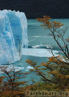 Spendid blues of Perito Mereno glacier in Argentina