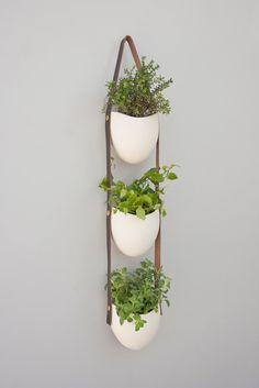 3 tier porcelain and leather planter- brown by lightandladder on Etsy https://www.etsy.com/listing/129695075/3-tier-porcelain-and-leather-planter