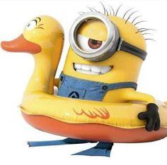 Minion in duck