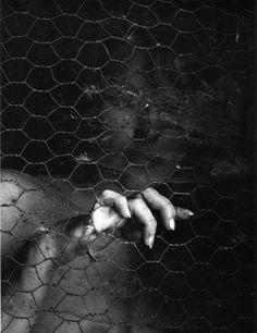 Cultura Inquieta - Judy Dater: la fotógrafa que conjuga el verbo amar
